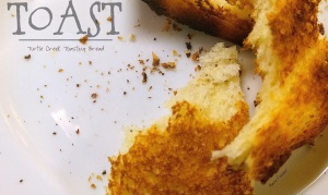 Toast Title